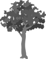 Ariel Tree Care